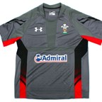 Wales 2013 Home